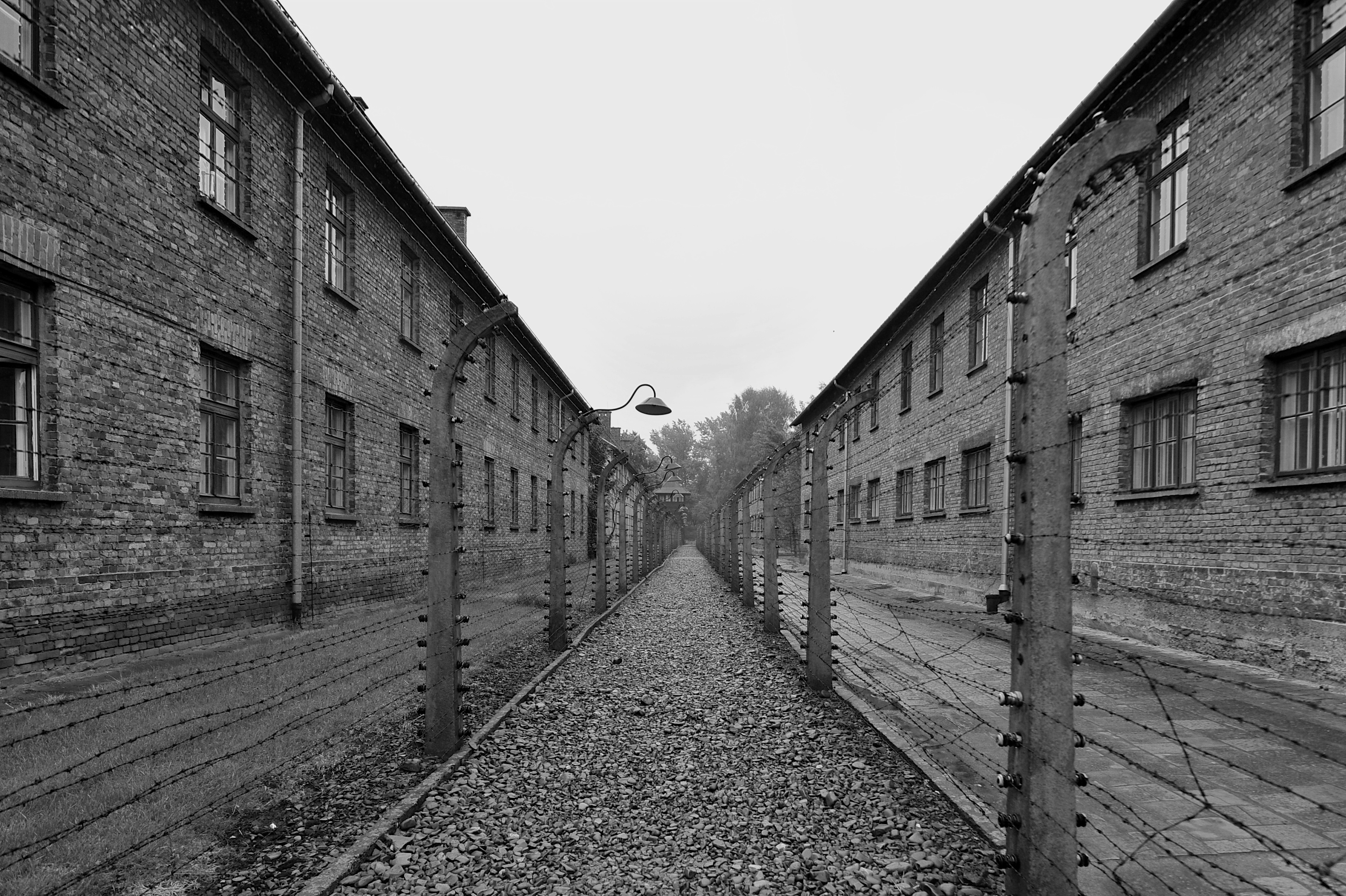 a history of auschwitz History of the holocaust: an overview 19  countries all over europe to auschwitz,treblinka, and four other major killing centers in german-  summary of the.