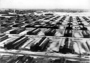 Birkenau-Luftaufnahme_low