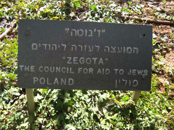 tree-honor-zegota02
