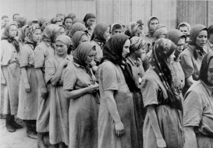 holocaust-pregnancy