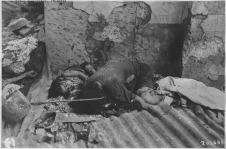 Japanese_atrocities._Philippines,_China,_Burma,_Japan_-_NARA_-_292598