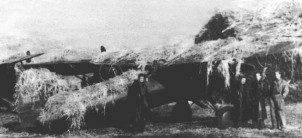 Polish_P-11_camouflaged_in_airfield_1939