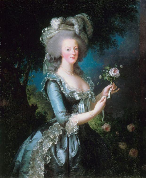 800px-louise_elisabeth_vigee-lebrun_-_marie-antoinette_dit__a_la_rose__-_google_art_project