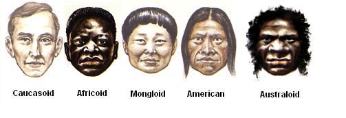 human_race