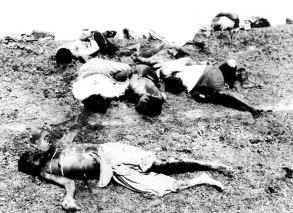 parsley-massacre