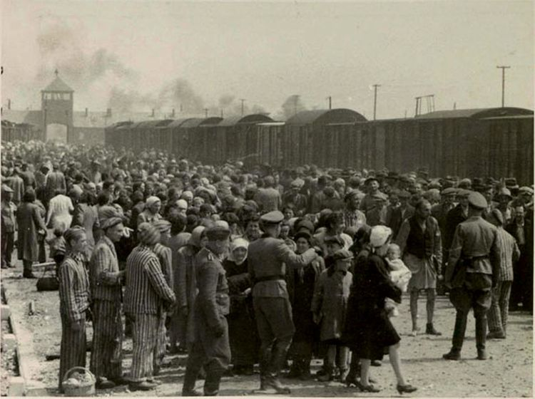 selection_on_the_ramp_at_auschwitz-birkenau_summer_1944_auschwitz_album