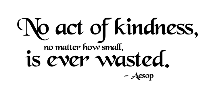 noactof-kindness-is-ever-wasted
