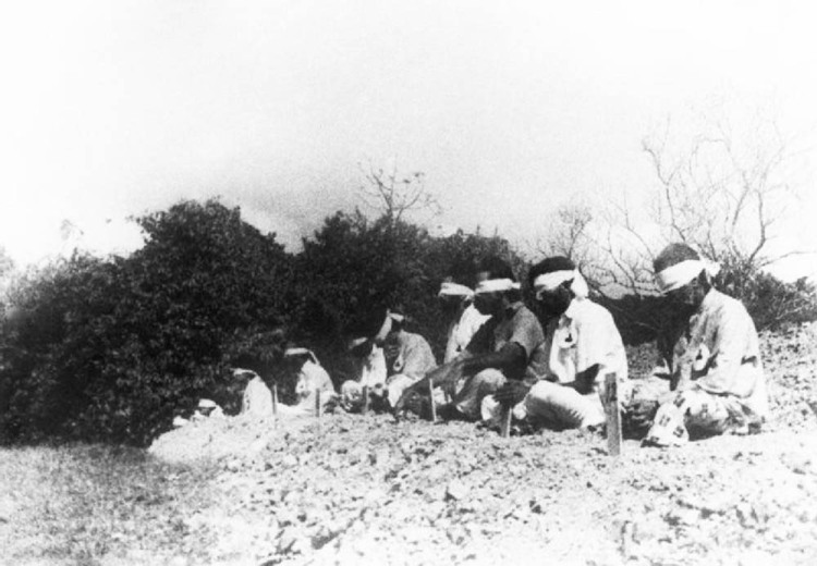 Japanese troops using prisoners of war for target practice, 1942 1