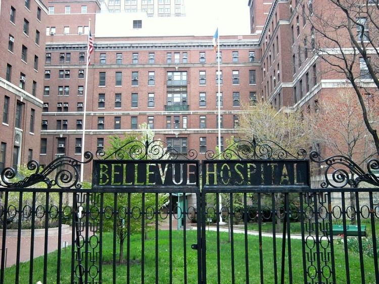 bellevue-hospital-center-office