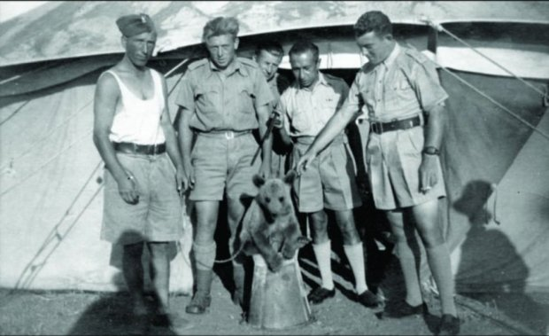 after-being-released-from-a-siberian-labor-camp-during-the-nazi-invasion-of-russia-in-1942-the-22nd-polish-supply-brigade-began-a-long-trek-south-toward-persia-along-the-way-they-bought