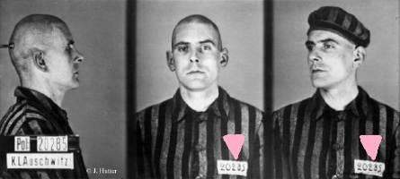 c756c38d342f044bf9220233e54adb22--pink-triangle-concentration-camps