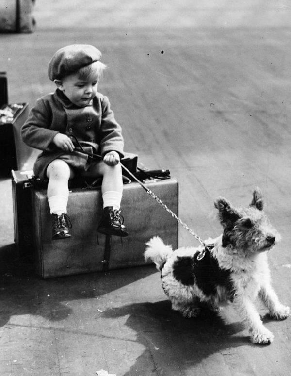 boy-with-a-dog