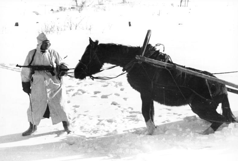 Bundesarchiv_Bild_101I-215-0366-03A,_Russland,_Soldat,_Pferd_im_Winter