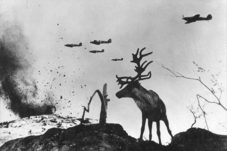 yevgeny_khaldei_reindeer