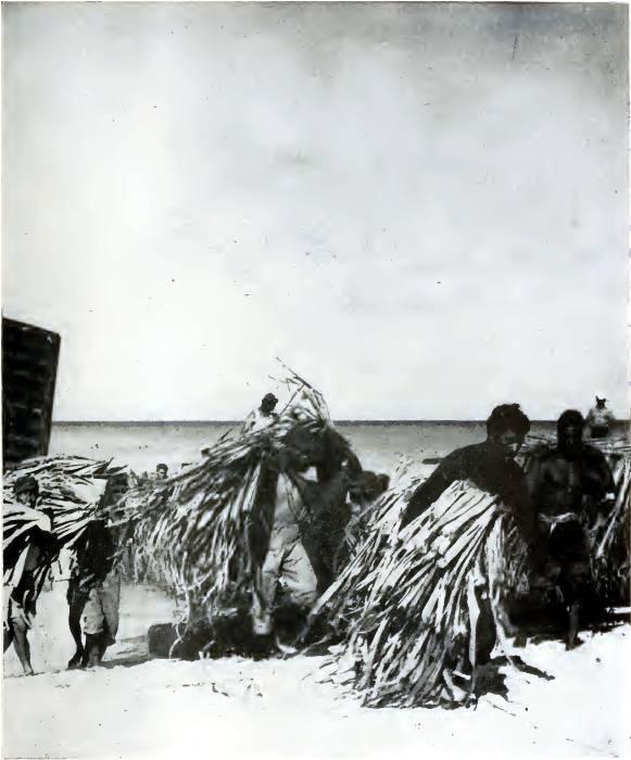 moving-population-bikini-atoll