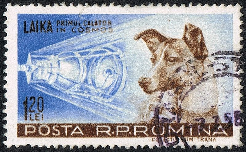 800px-Posta_Romana_-_1959_-_Laika_120_B