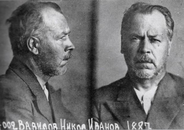 Vavilov_in_prison