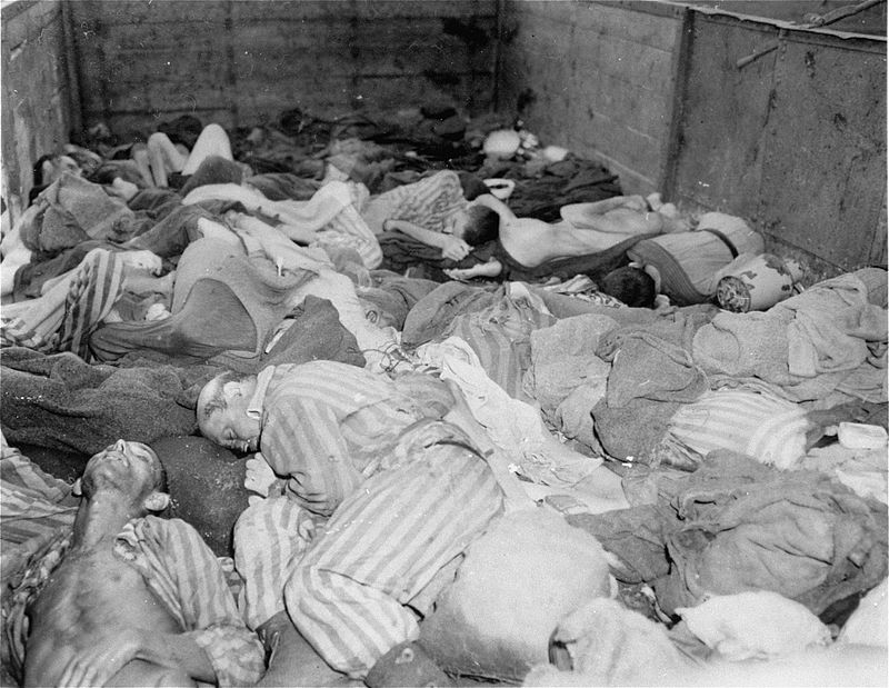 Dachau_Death_Train.jpeg
