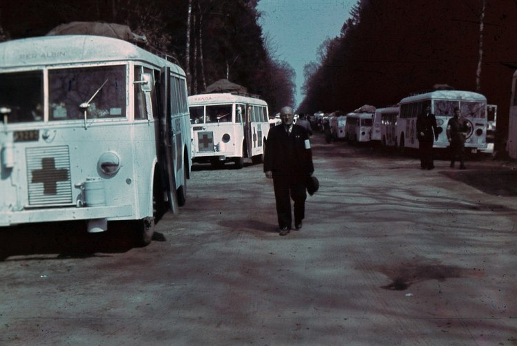1024px-Wanted_Information_about_The_White_Buses.