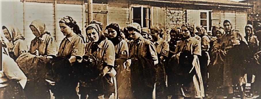 Concentration camp sex slaves
