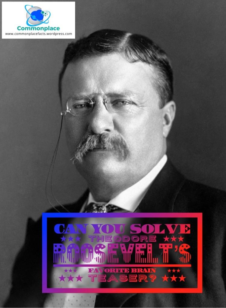 #presidents #POTUS #brainteasers #TheodoreRoosevelt