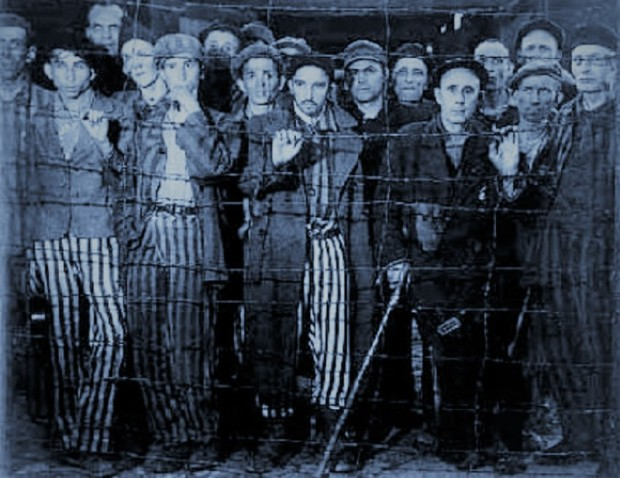 Buchenwaldf