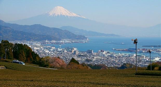 destination_shizuoka_top